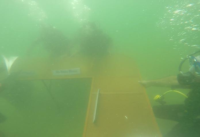 underwater-conference10